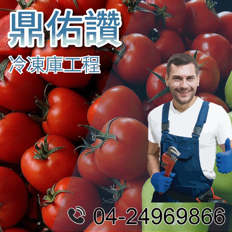 傳統式冷藏庫|蔬菜冷藏室